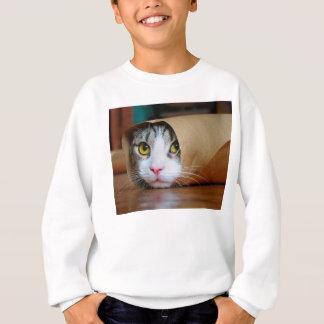 Agasalho Gato de papel - gatos engraçados - meme do gato -
