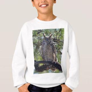 Agasalho Grande coruja Horned na árvore