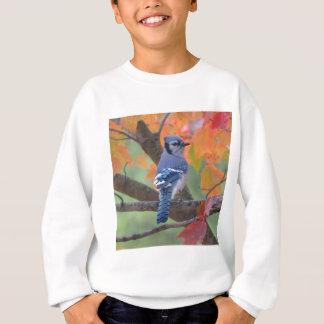 Agasalho Jay azul