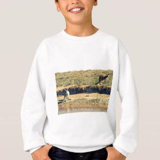 Agasalho Kangoroo australiano