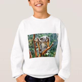Agasalho Koala