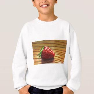 Agasalho Listra da morango