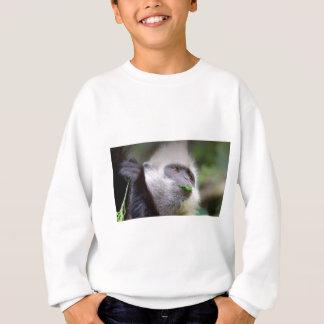 Agasalho Macaco africano