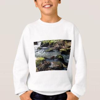 Agasalho musgo em The Creek