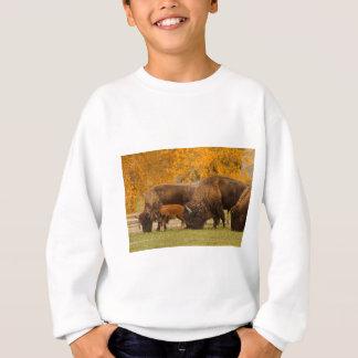 Agasalho Nação da família do bisonte