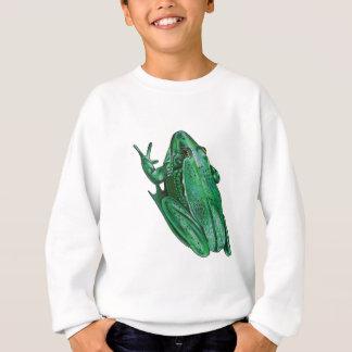 Agasalho O Adenture de Kermit