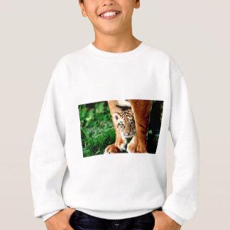 Agasalho O tigre Cub de Bengal espreita para fora