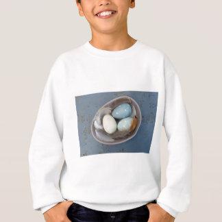 Agasalho Ovos e penas
