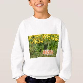 Agasalho Ovos na caixa na grama com daffodils amarelos