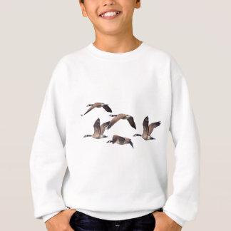 Agasalho Rebanho de gansos selvagens