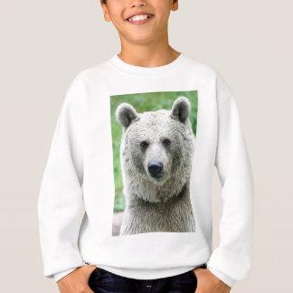 Agasalho Retrato de um urso