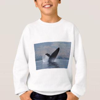 Agasalho rompimento da baleia do humback