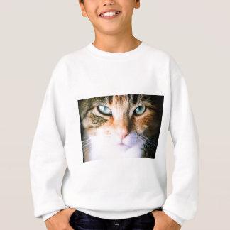 Agasalho Roxie o gato