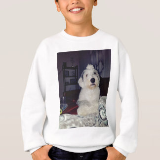 Agasalho Sam o Sheepdog