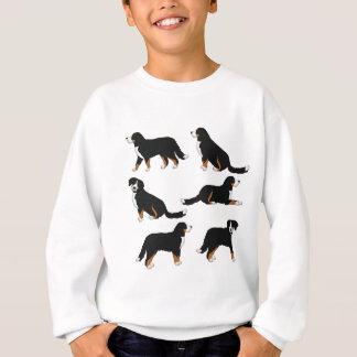 Agasalho Sennenhund de Berna selecção