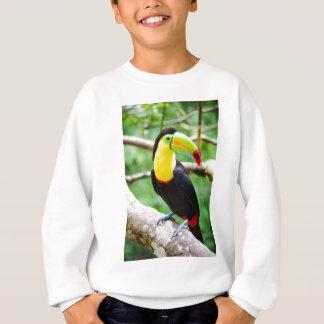 Agasalho Toucan bonito