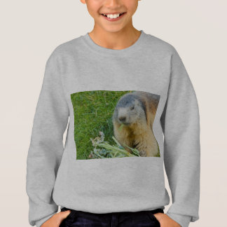 Agasalho uma marmota sociável em ComfortBlend®Swheatshirt