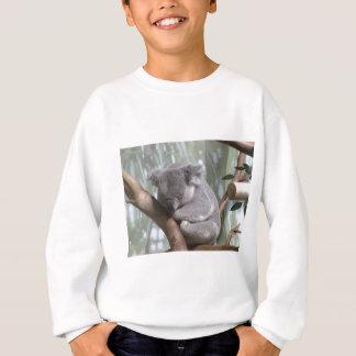 Agasalho urso de koala