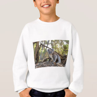 Agasalho Urso de Koala cinzento e branco