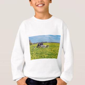 Agasalho Vaca com as vitelas que pastam no prado com