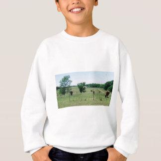 Agasalho Vacas (na fazenda)