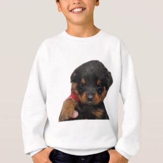 Agasalho Vermelho do filhote de cachorro de Rottweiler