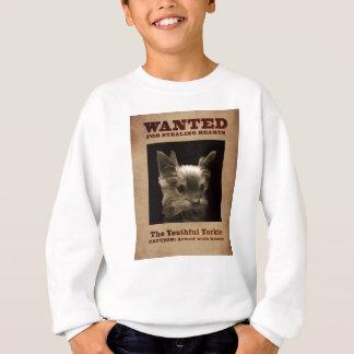 Agasalho Yorkie jovem quis a camisola da criança
