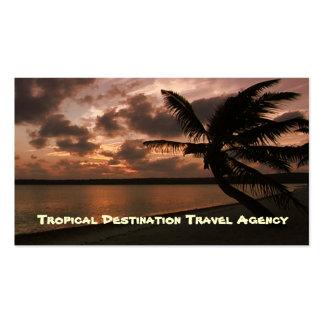 Agente de viagens cartoes de visitas
