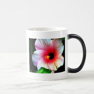 Agrida o hibiscus 72a do jGibney da série do Caneca Transmutação