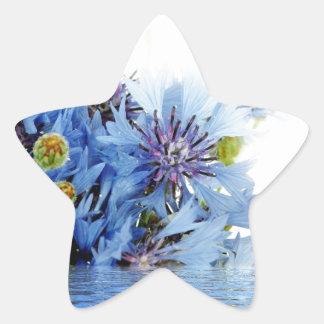 Água floral azul do espaço livre do arranjo da adesito estrela