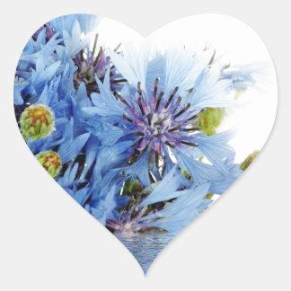 Água floral azul do espaço livre do arranjo da adesivo em forma de coração