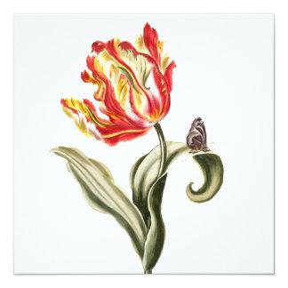 Aguarela da borboleta da flor da tulipa do convite quadrado 13.35 x 13.35cm