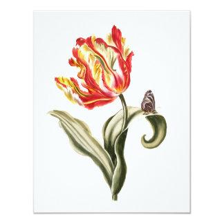 Aguarela da borboleta da flor da tulipa do convite 10.79 x 13.97cm
