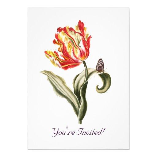 Aguarela da borboleta da flor da tulipa do papagai convites