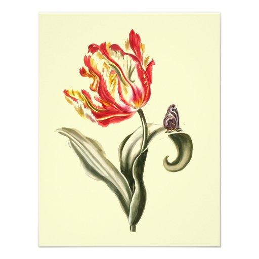 Aguarela da borboleta da flor da tulipa do papagai convites personalizado