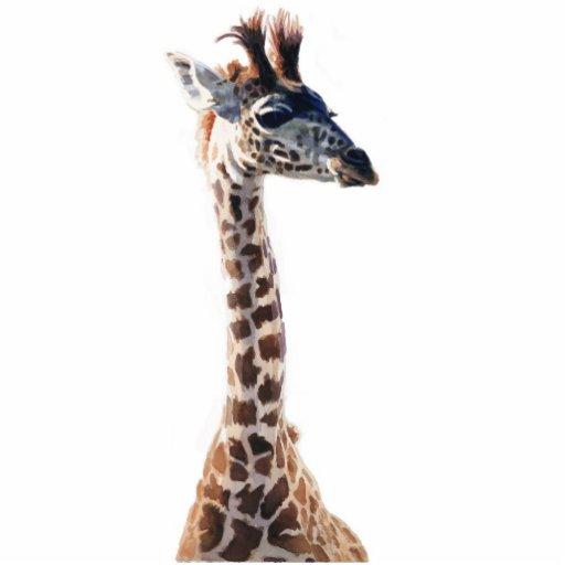 """""""Aguarela do animal dos animais selvagens do giraf Fotoescultura"""