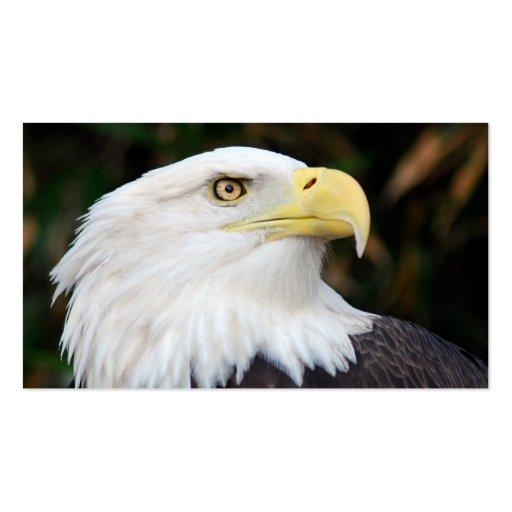 Águia americana americana modelo cartões de visita