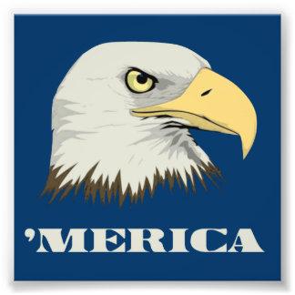 Águia americana americana para Merica Impressão De Foto