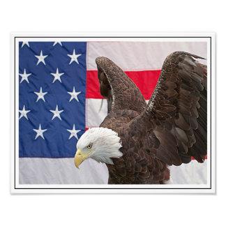 Águia americana com a bandeira americana impressão de foto
