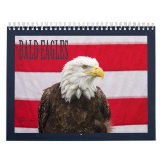 Águias americanas calendário