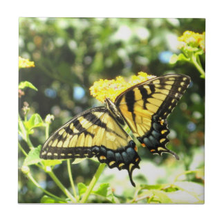 AH azulejo amarelo da borboleta de Swallowtail
