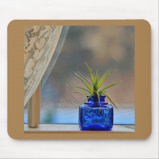 Airplant no Inkwell do cobalto Mouse Pad