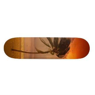 Al de solo vento. skate boards