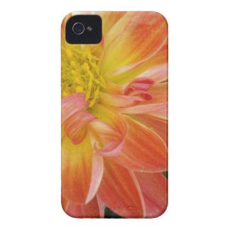 alaranjado-flor capa para iPhone 4 Case-Mate