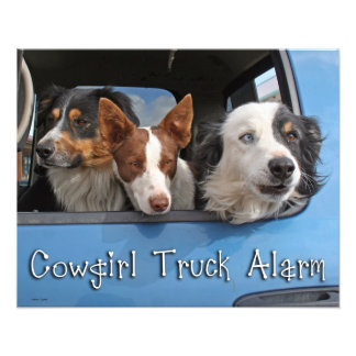 Alarme 16x20 do caminhão da vaqueira impressão de fotos