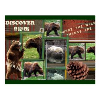 Alaska-Onde as coisas selvagens são Cartão Postal