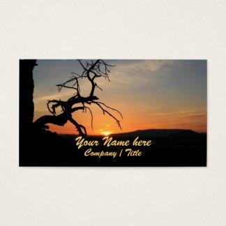 Alcance para o Sun Cartão De Visitas