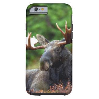 Alces Capa Tough Para iPhone 6
