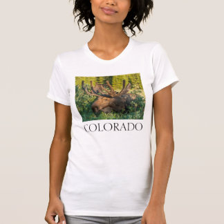 Alces de Bull no veludo, Colorado Camiseta
