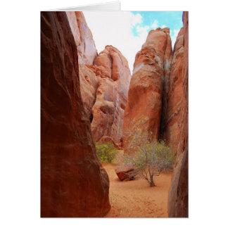 Aletas, arcos parque nacional, cartão de Utá